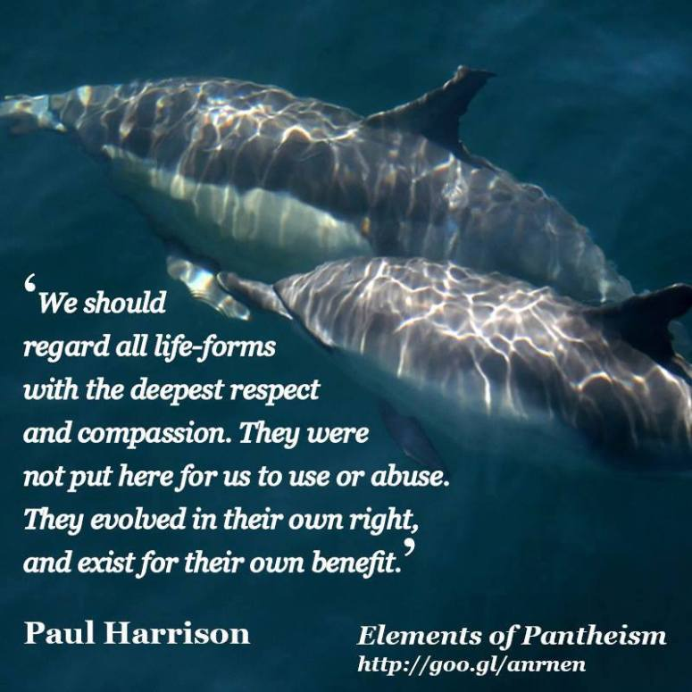 Sea Life Quote Paul Harrison