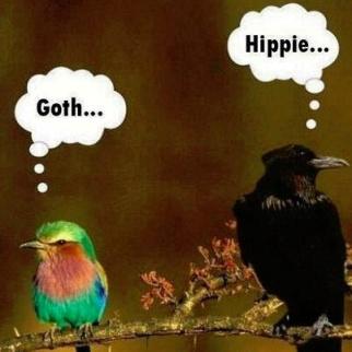 Goth Hippie Meme