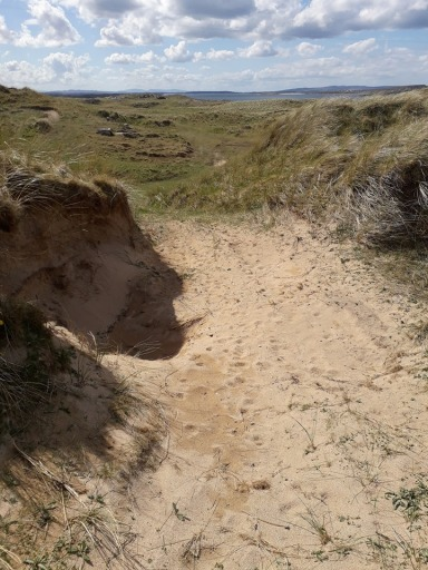 Sand Dune Donegal