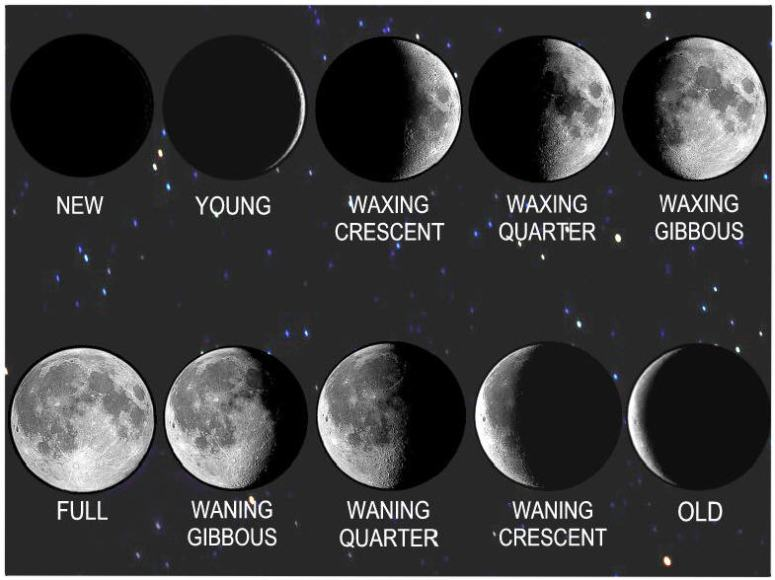 Moon Phases Image New Moon