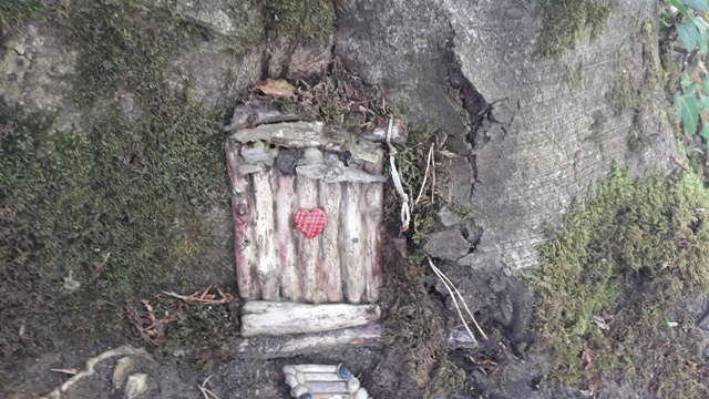 Fairy Door in Fairy Tree in Forest in Ireland