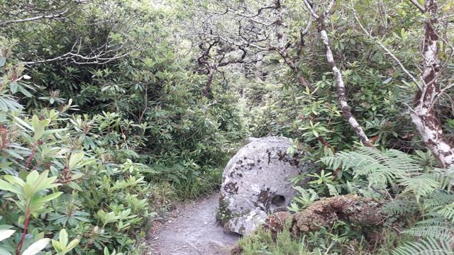 Holestone Donegal Ireland