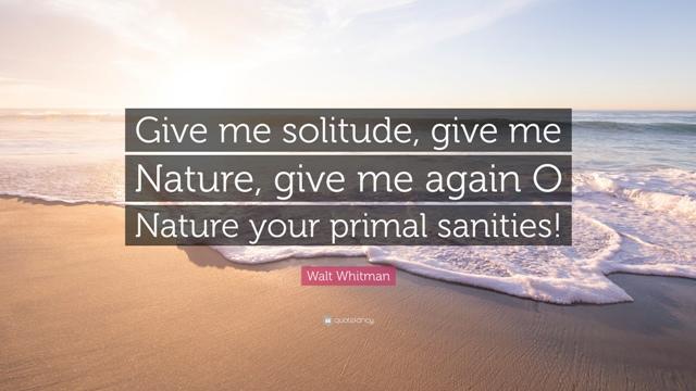 solitude quote Walt whitman