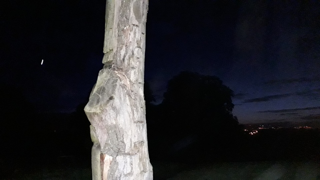 Wooden Carving Solstice Walk