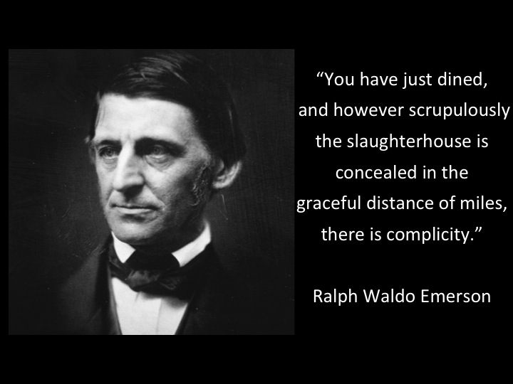 Slaughterhouse Quote