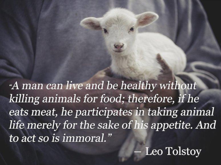 vegan tolstoy