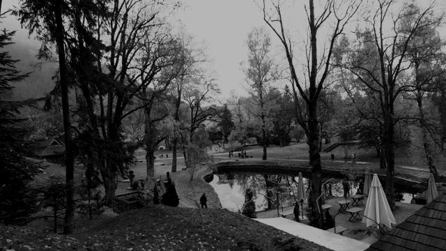 Bran Castle Lake