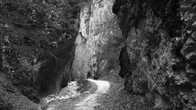 Canyon Transylvania