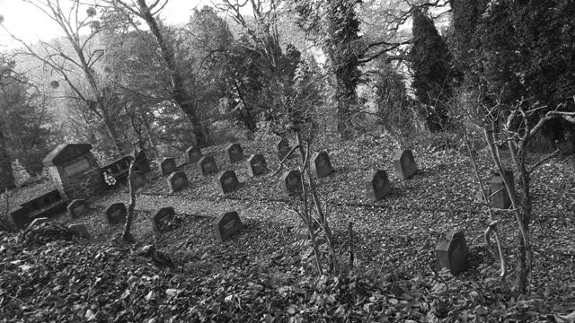 Cemetery Sighisoara Transylvania