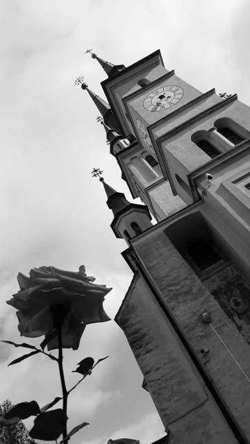 Fairytale church with Rose