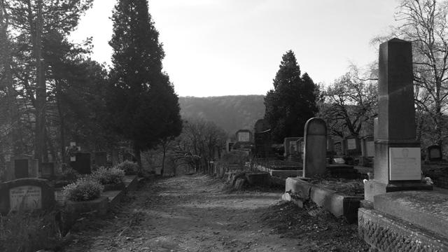 Graves sighisoara