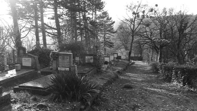 Graveyard on Hill Transylvania