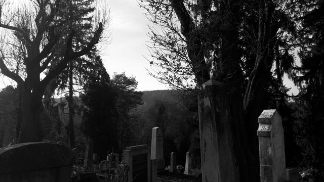 Graveyard sighisoara