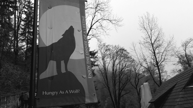 Hungry Like the Wolf Draculas Castle