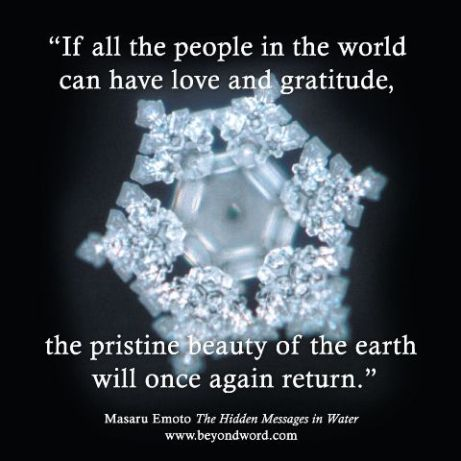 Masaru Emoto love gratitude water quote