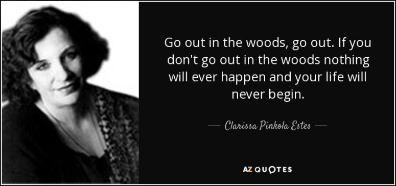wolfquote-go-out-in-the-woods-go-out-if-you-don-t-go-out-in-the-woods-nothing-will-ever-happen-clarissa-pinkola-estes-women-wolves