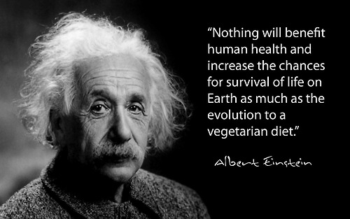 Albert Einstein Vegetarian Quote