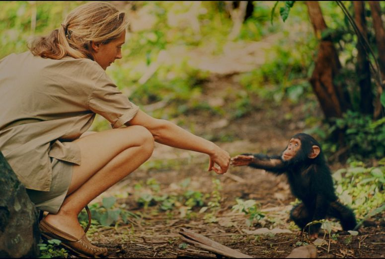 Jane Goodall and baby monkey