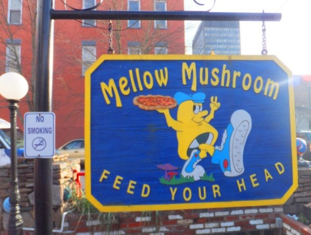 mellow-mushroom-feed-your-head