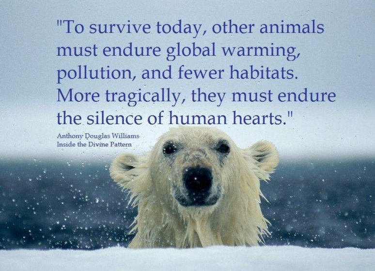 Polar Bear Animal Rights Climate Change Quote