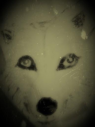 White Wolf Moon Stone