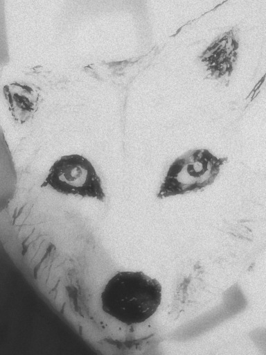 White Wolf painted stone