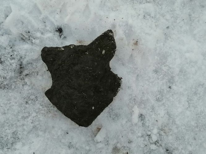 Wolf Stone in the Snow